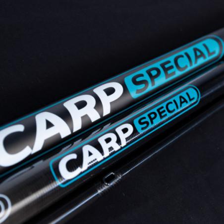 CANNE R-CARP SPECIAL 9.50M648
