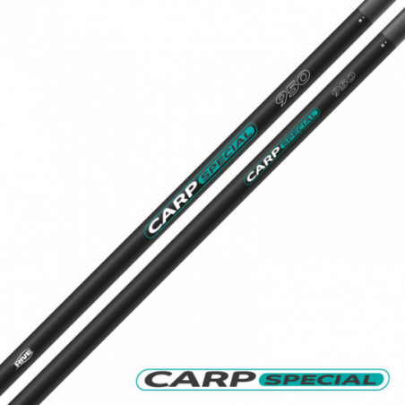 CANNE R-CARP SPECIAL 9.50M649